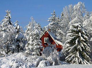 Sweden_nature_06