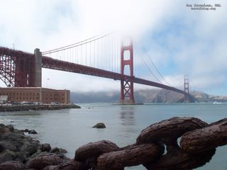 Tb_san_francisco_usa